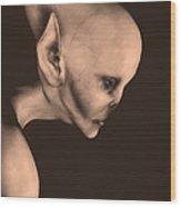 Alien Portrait  Wood Print by Bob Orsillo