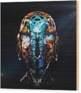 Alien Wise Man Wood Print