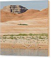 Alien Wreckage - Lake Powell Wood Print