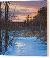 Alive And Well In Maine Wood Print