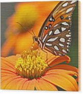 All About Orange 3236 3 Wood Print