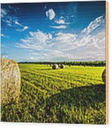 All American Hay Bales Wood Print