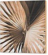 All Points Fern Wood Print