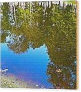 All Pond Treeflection Wood Print