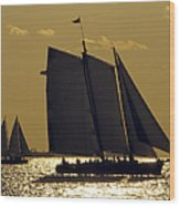 All Sails Sunset In Key West Wood Print