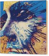 All Spent Aches  Wood Print