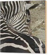 All Stripes Zebra 2 Wood Print