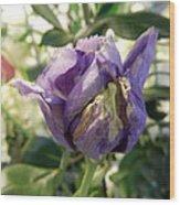 All Things Purple Wood Print