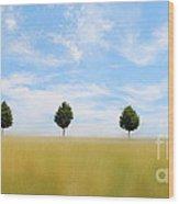 Allee  03 Wood Print