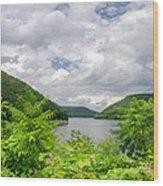 Allegheny Reservoir Wood Print