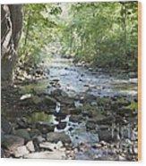 Allen Creek Wood Print
