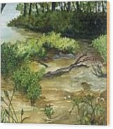 Allequash Creek On Trout Lake Wood Print by Helen Klebesadel