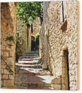 Alley In Eze, France Wood Print