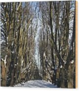 Alley In The Snow Wood Print