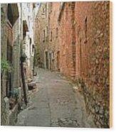 Alley In Tourrette-sur-loup Wood Print