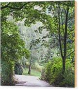 Alley Of The Petrin Park. Prague Wood Print