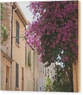 Alley With Bougainvillea - Provence Wood Print