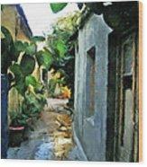 Alleyway In Rhodes Greece Wood Print