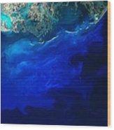 Allgal Bloom Of A Coastline Wood Print