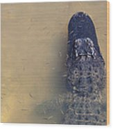 Alligator And Fishes Wood Print