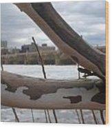 Alligator Branch Wood Print