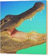 Alligator Head With Open Mouth Wood Print
