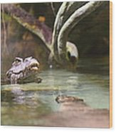 Alligator - National Aquarium In Baltimore Md - 12121 Wood Print