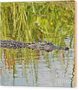 Alligator Reflection Wood Print by Al Powell Photography USA