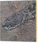 Alligator Skull Fossil 2 Wood Print