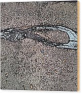 Alligator Skull Fossil 3 Wood Print