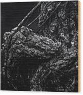Alligator Tree Wood Print