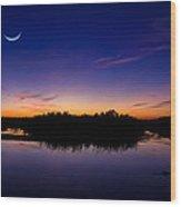 Alligator Twilight Wood Print