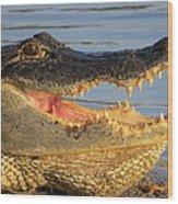 Alligator's  Mouth Wood Print