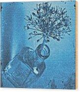 Allium Cyanotype Wood Print