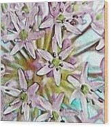 Allium Globe Wood Print