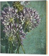 Allium Wildflower With Grunge Textures Wood Print