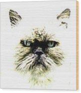 'allo Kitty Wood Print