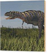 Alluring Aucasaurus In Grassland Wood Print