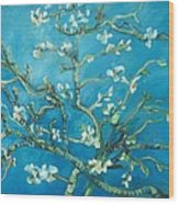 Almond Blossom Branches Print Wood Print