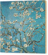 Almond Branches In Bloom Wood Print