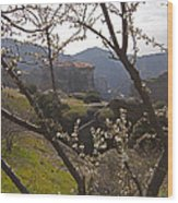 Almond Tree And Monastery   #9815 Wood Print