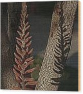 Aloe Stalk Wood Print