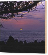 Aloha V Wood Print