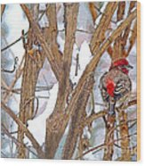 Alone In The Snow Storm Wood Print