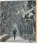 Alone In The  Winter Wood Print