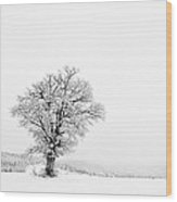 Alone In Winter Wood Print