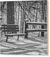 Alone In Your Thoughts Wood Print