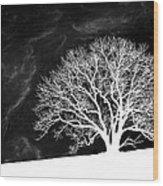 Alone on a Hill Wood Print