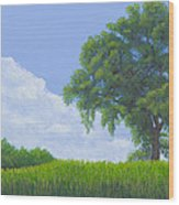 Alone Summer Wood Print