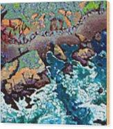 Along California Coastline Wood Print